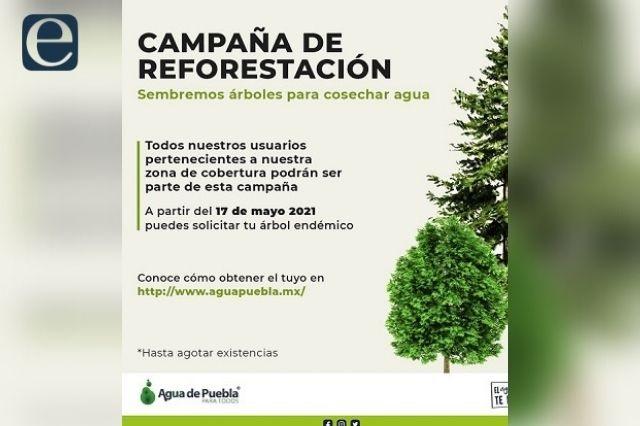 Agua de Puebla emprende campaña de reforestación