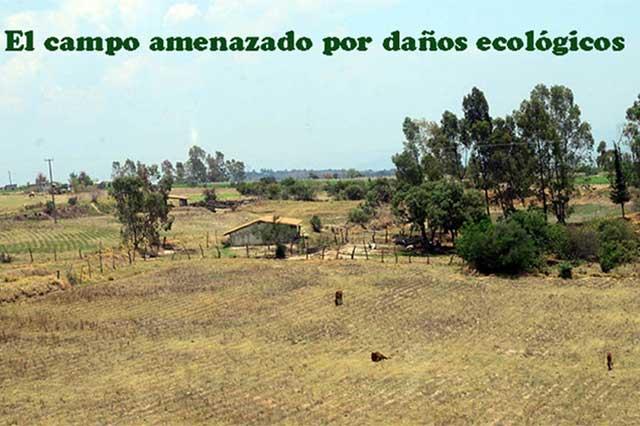 Tierras de cultivo sufren daños ecológicos en México