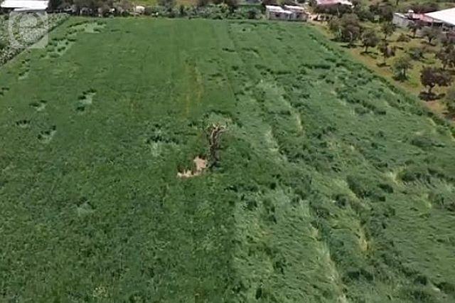 Resuelven el misterio de las figuras en zona del socavón