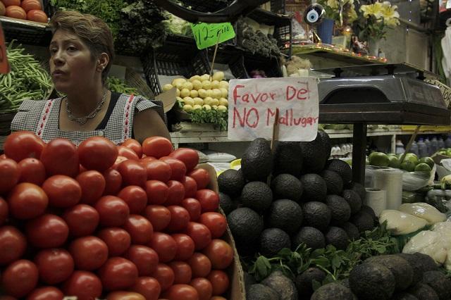 Cerveza, aguacate y tomate salvan al agro del efecto Covid
