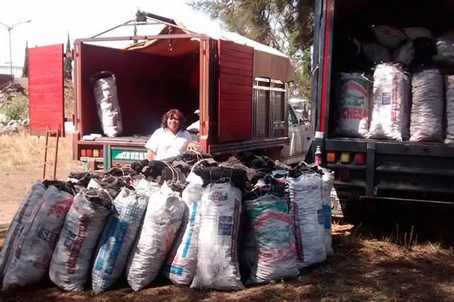 Decomisa Profepa cargamento de carbón en el Parque Popo-Izta