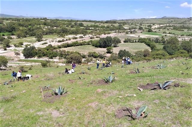 Reconoce CEMEFI programa de CEMEX de restauración ambiental