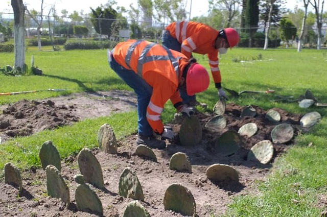 Instalan en Puebla huerto para fomentar cuidado al ambiente