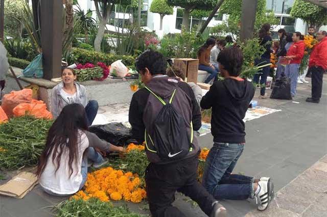 Produce Puebla más de 10 mil toneladas de cempasúchil: Sagarpa