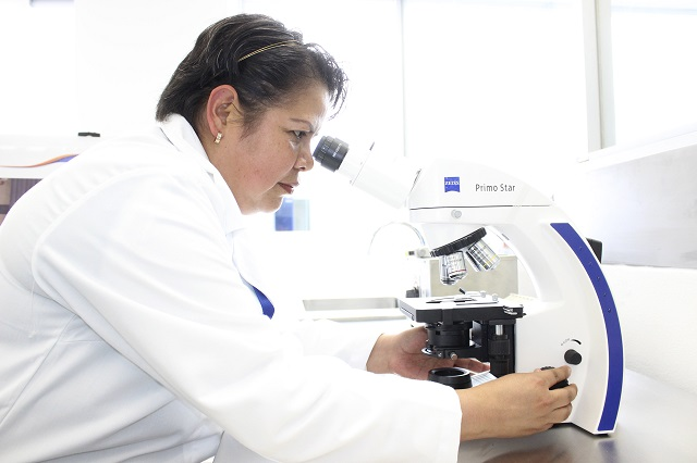 Universidad de la Salud inicia registro de aspirantes en junio
