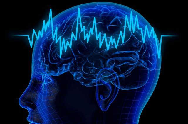 Mediante impulsos eléctricos, el cerebro construye la realidad