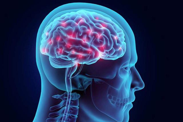 4 alimentos que son importantes para tu cerebro y que lo estimulan