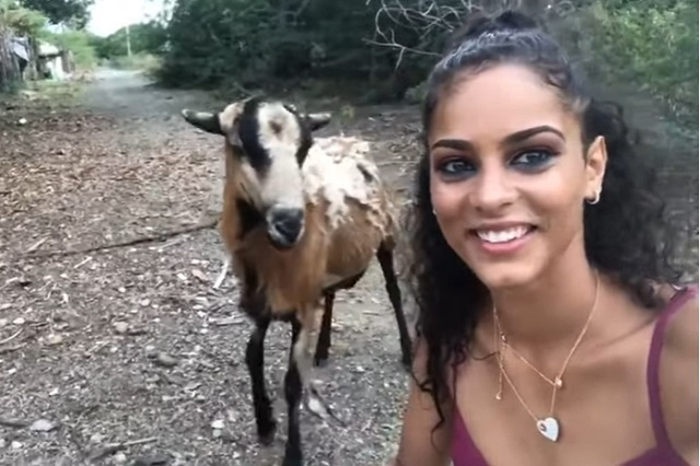 Video: Cabra golpea a joven cuando se tomaba una selfie
