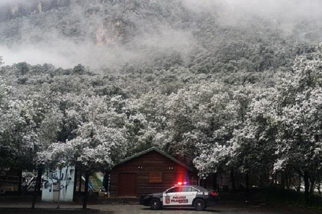 Impactantes imágenes de Chipinque, Nuevo León, bajo el hielo