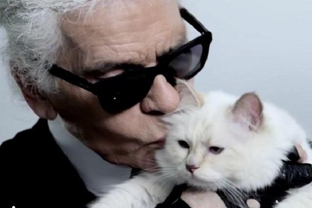 La gatita de Karl Lagerfeld heredará su fortuna