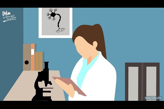 Mujeres representan 37% de los científicos en México