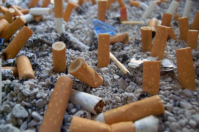 Las colillas de cigarro contaminan los mares más que el plástico