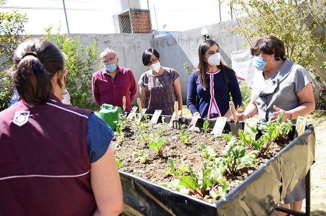 Beneficia municipio a adultos mayores con módulo de producción alimentaria