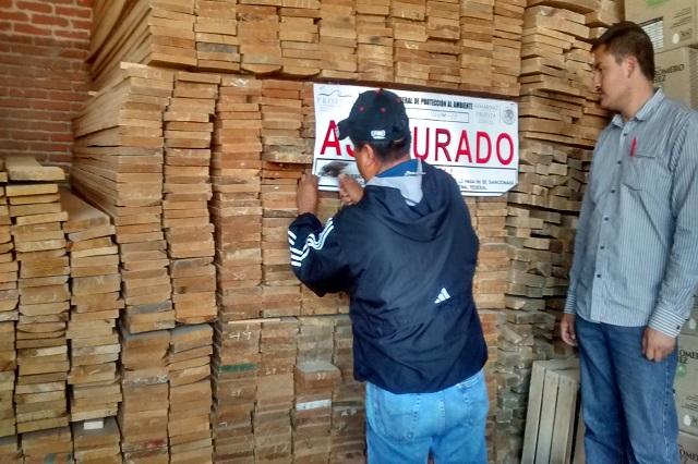 Clausura Prefepa maderería en Cuautlancingo