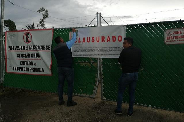 Clausura Medio Ambiente tala de árboles en Lomas de San Juan