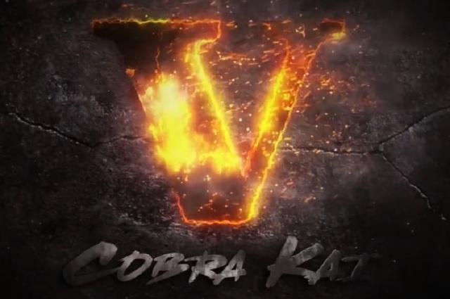 Netflix revela que Cobra Kai tendrá 5 temporada