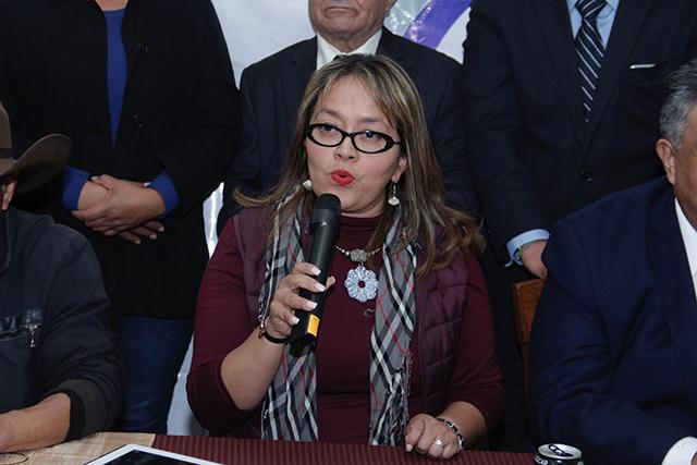 Morena no necesita importar candidatos, dice Libertad Aguirre