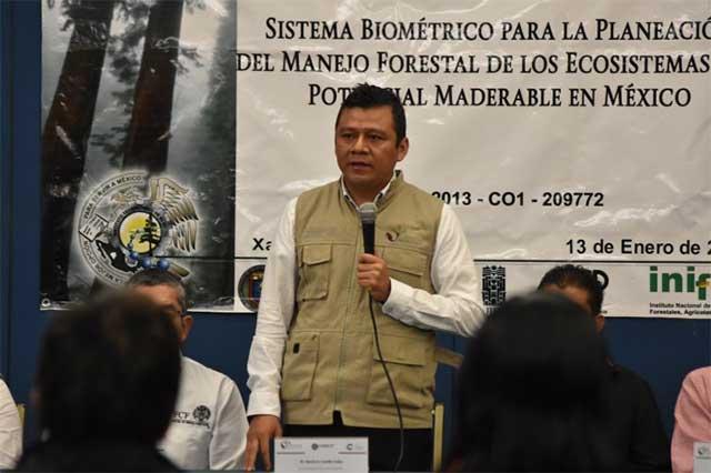 Sin rastro del delegado de la Conafor y tres marinos desaparecidos