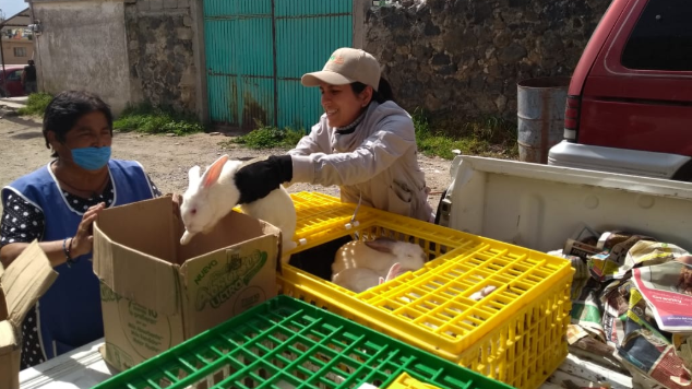 Carroll inicia proyecto de cunicultura junto a comunidades de Tezontepec