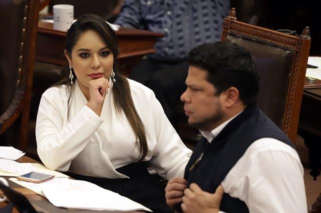 Diputada Tonantzin Fernández exigió  la mitad de sueldo a su suplente