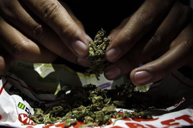Decomisa PF 336 kilos de mariguana en empresa de paquetería
