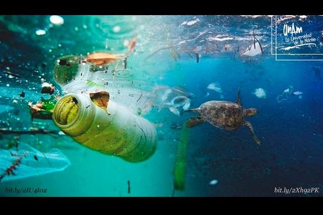 Hasta 13 toneladas de plástico se arrojan al océano cada año