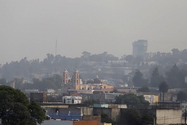 Reforestación y vigilancia a empresas y transporte: Pacheco