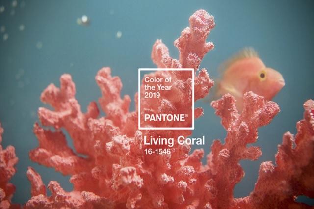 Pantone elige al Coral Vivo como color del año 2019
