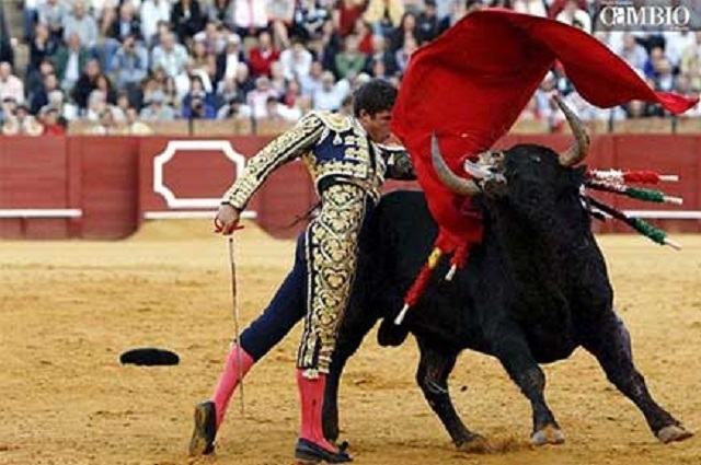 Diputados locales pretenden prohibir corridas de toros y palenques