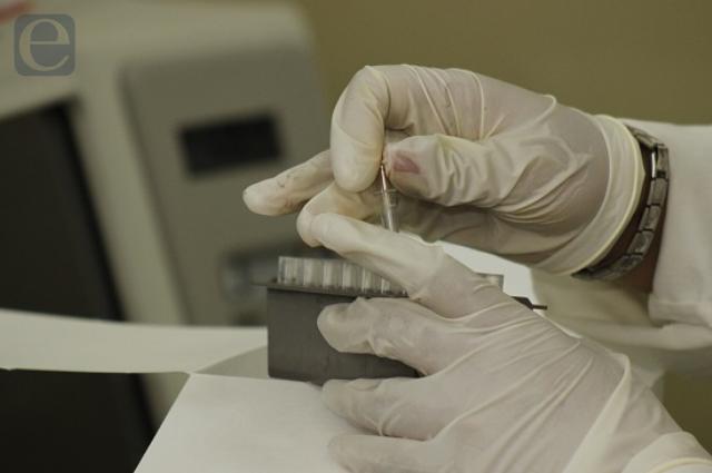 OMS reporta estancada investigación del origen de covid-19