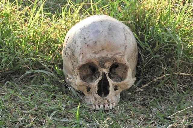 Hallan cráneo humano en límites de La Resurrección y Xonacatepec