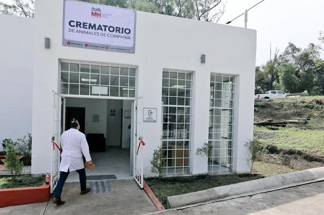 Abre en CDMX el primer crematorio público para mascotas