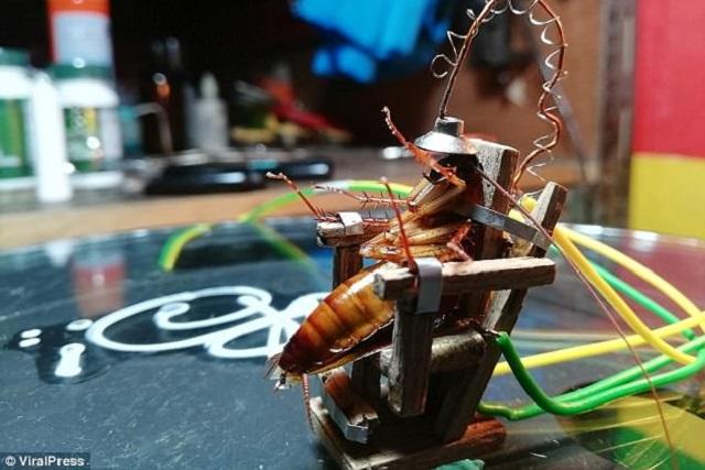 Artista pone una cucaracha en mini silla eléctrica y la electrocuta
