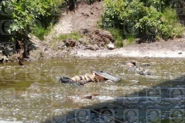 Hallan tres cuerpos en río de Hermenegildo Galeana