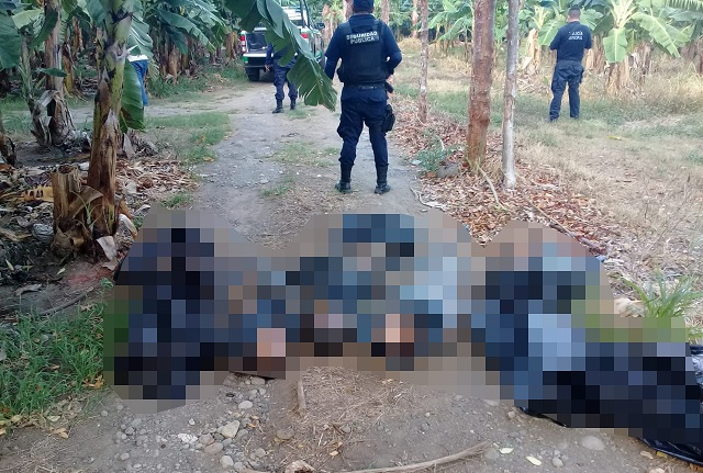 5 cuerpos embolsados en Vega de Alatorre