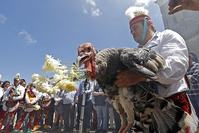 México consume mucho pavo y la mayoría es importado de EU