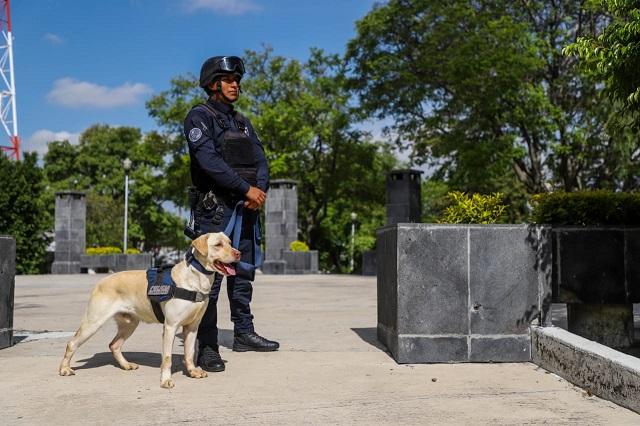 Más de 570 detenidos por delitos contra la salud en Puebla