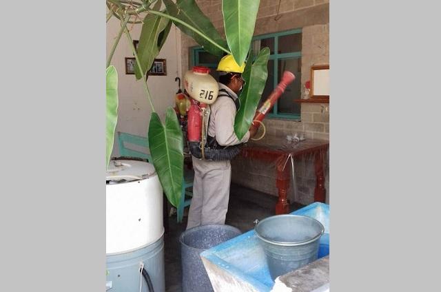 Ubican zona de riesgo por dengue al sur de Tehuacán
