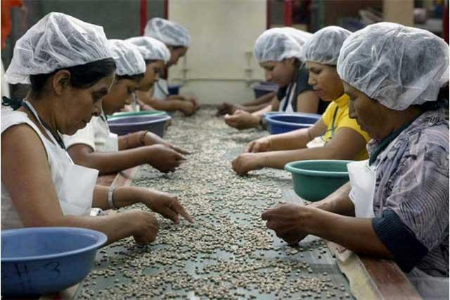 Cada vez hay más mujeres trabajando, pero en desigualdad total