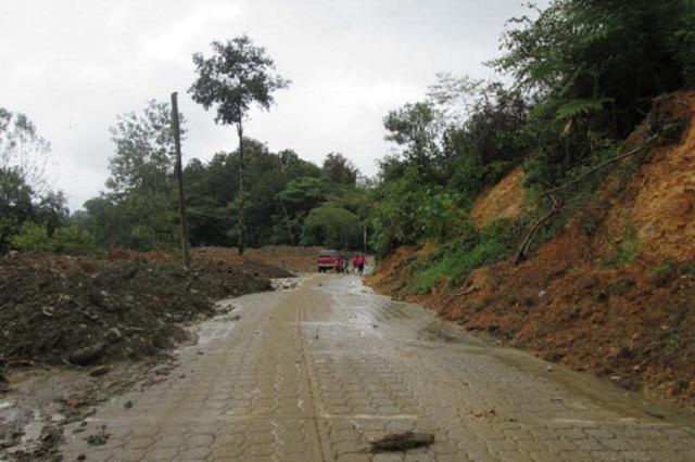 Pequeños deslaves y árboles caídos por lluvias en la Sierra Norte de Puebla