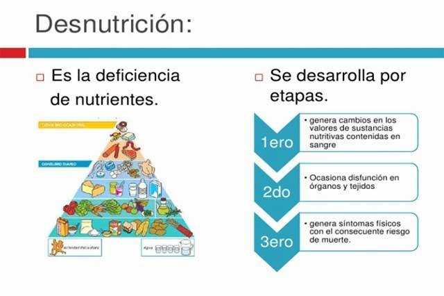 Mala nutrición, muy mala noticia