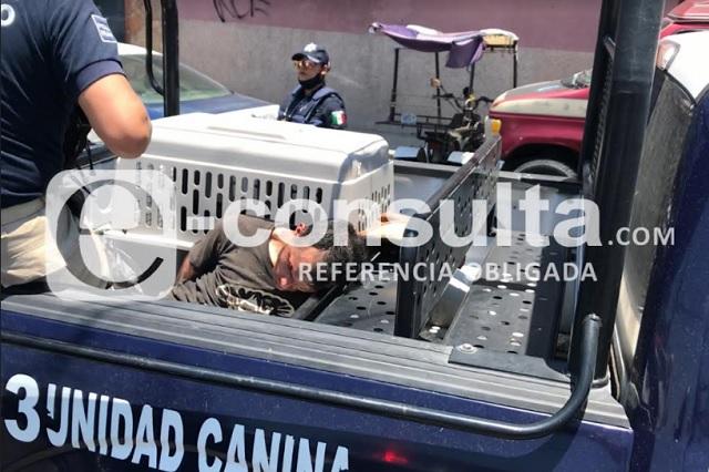 Tras persecución, policía detiene a ladrón y recupera vehículos