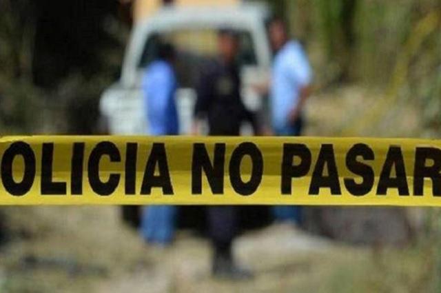 Perros devoran cadáver en un cerro al sur del estado de Puebla