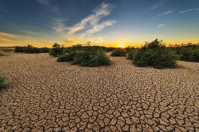 Acciones contra reloj para salvar al planeta del deterioro