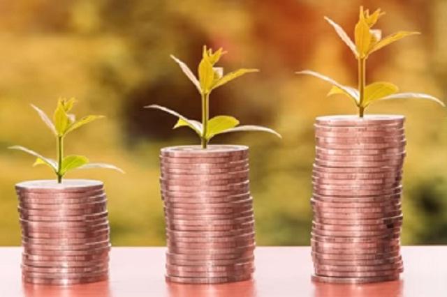 Biodecodificación rizoma y la relación del dinero con el árbol genealógico