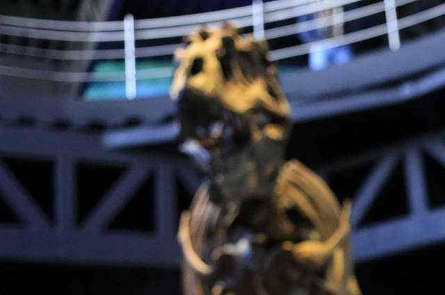 """Descubierto en Nuevo México un antecesor del """"Tyrannosaurus rex"""""""