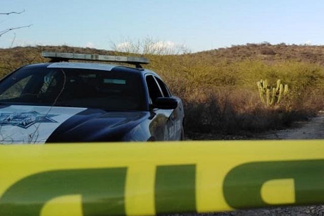 Hallan a diputada de Morena y 3 cadáveres más en fosa de Colima