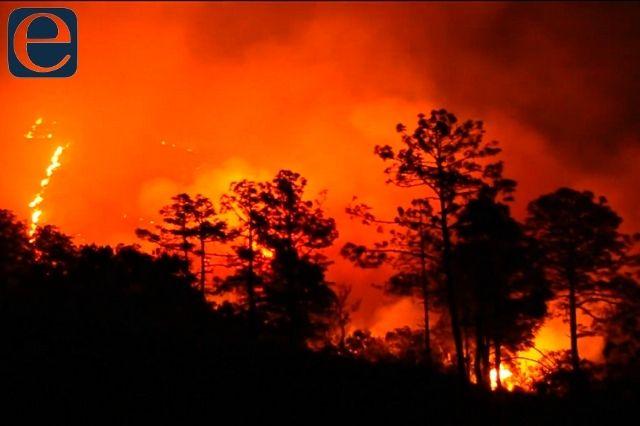 Acusan tortuguismo en atención a incendio forestal de Tetela