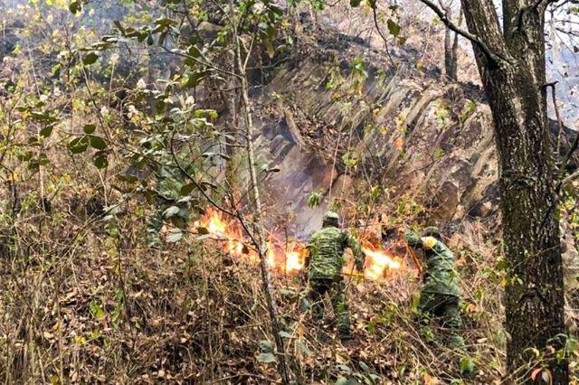 Hasta que llegó la SEDENA se controló el incendio de 5 días en Tetela