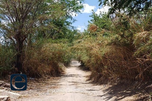 Hallan cadáver de mujer en barranca de Tochtepec